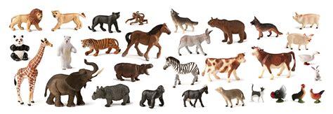 imagenes animales acuaticos y terrestres surtido de animales