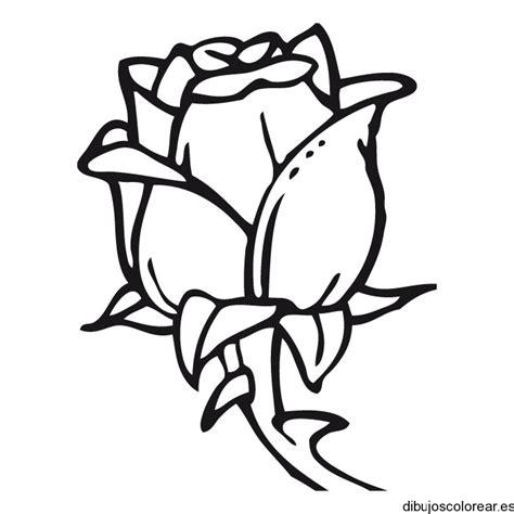 imagenes de rosas faciles dibujo de una rosa con espinas