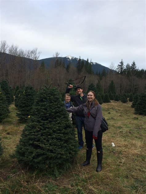 good christmas tree farm washington state we had a wonderful time picking out our tree loved the free cider and we bought some cookies