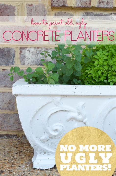 Painting Concrete Planters by How To Paint Concrete Planters