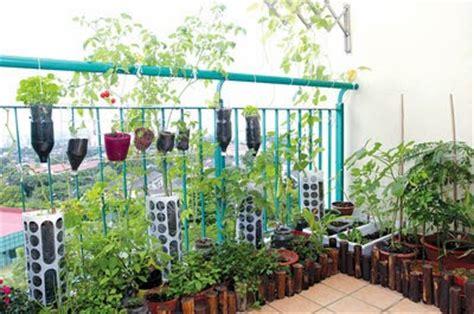 dekorasi laman herba  ruang balkoni dekorasi halaman rumah