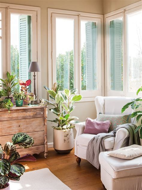 decorar los interiores con plantas c 243 mo decorar con plantas