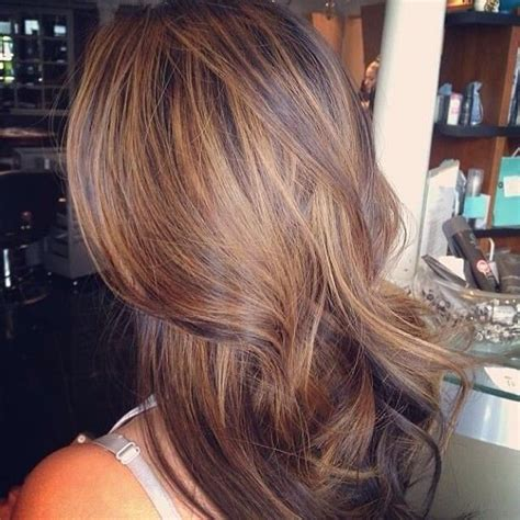 soft highlights and steely lowlights to blend her grey brown hair with soft highlights hair makeup pinterest
