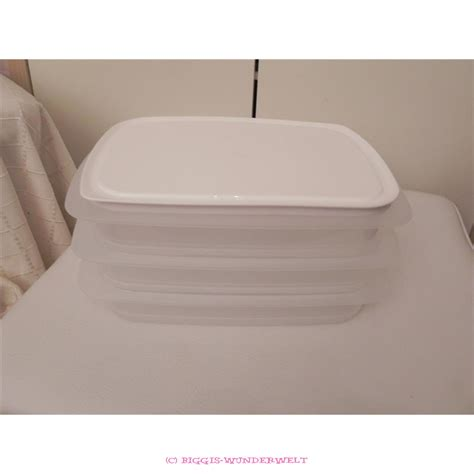 Cool Tupperware Set tupperware cool n fresh set flach biggis wunderwelt