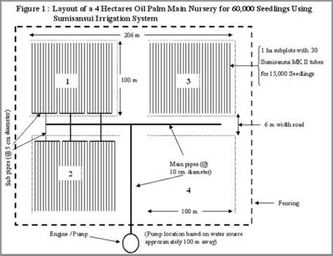 nursery management layout oil palm 171 applied agricultural resources