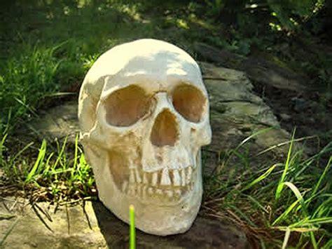 Skull Garden by Human Skull Replica Garden Ornament Statue