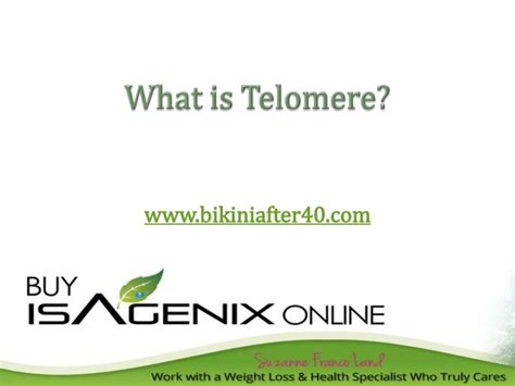 what are telomeres telomere learning center what is telomere