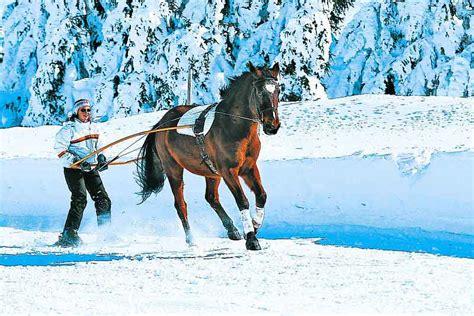 Attrayant Cuisine Nature Et Decouverte #4: ski-jo%C3%ABring-cheval.jpg