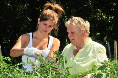 students help grow fresh vegetables for south hadley food