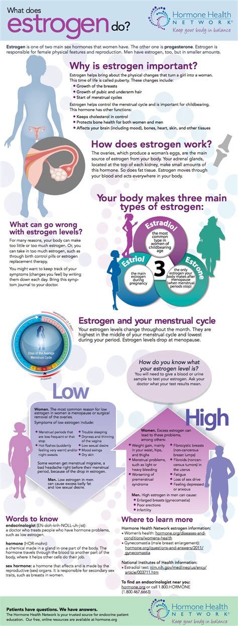 supplement estrogen estrogen supplements for transgender images