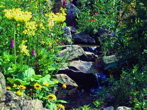 Garten Ohne Pflanzen by Kein Gartenteich Ohne Pflanzen Teil 4 Gartenteich