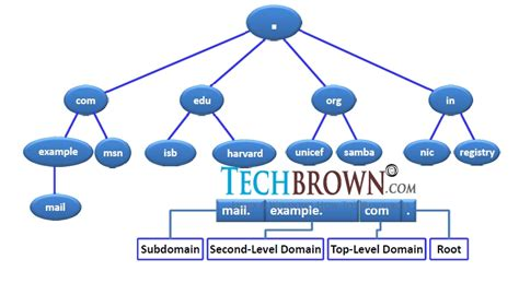 Lookup Zone Resolves Dynamic Dns Server Configuration On Centos 6 Rhel 6