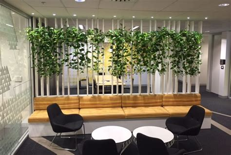 room dividers plants  work