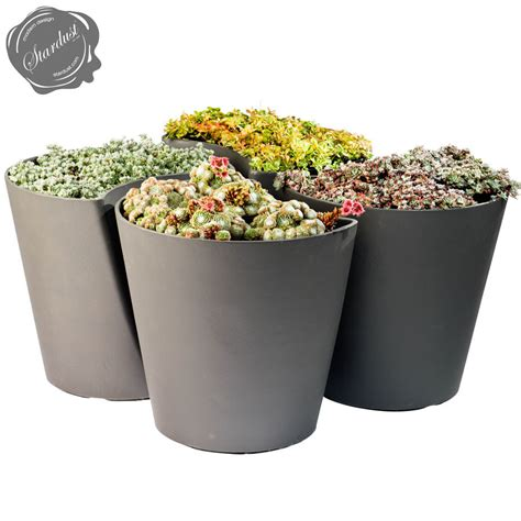 planter pot ginkgo biloba contemporary modern planter pot stardust