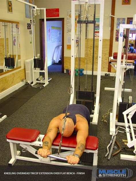 flat bench tricep extension flat bench tricep extension 28 images tricep exercises