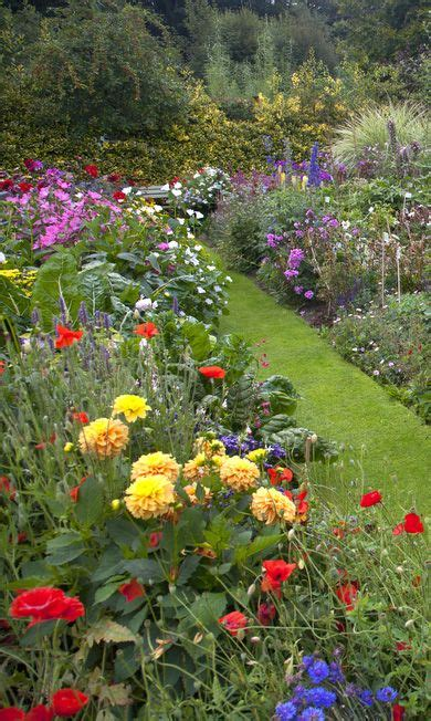 cottage garden border plants 25 best ideas about herbaceous border on