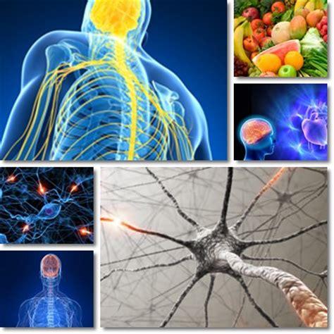 giramenti di testa e mal di stomaco nervo vago infiammato vitamine proteine