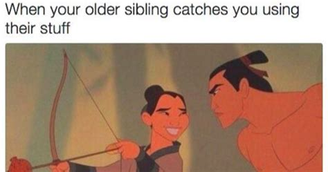 sibling memes and relatable memes about siblings