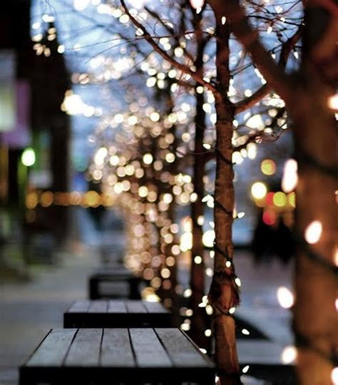 Trees Twinkle Lights Pinterest Twinkle Tree Lights