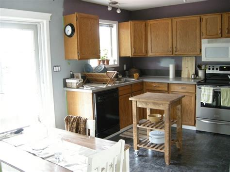 l room grey kitchen cabinets quicua com intriguing grey walls in kitchen with white cabinet
