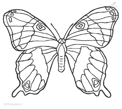 full size coloring sheets coloring pages