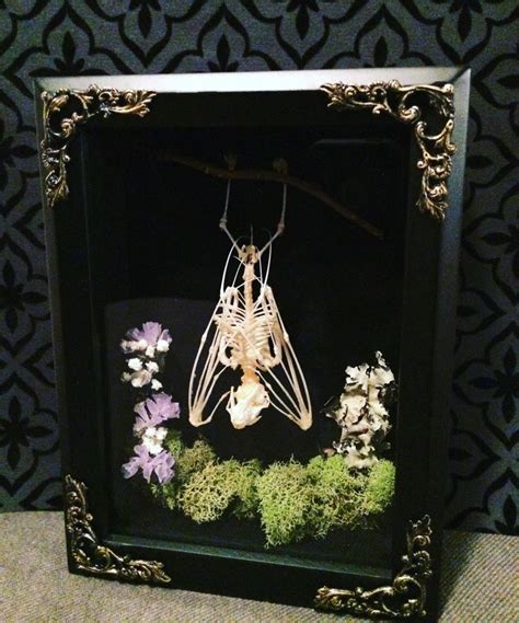 victorian gothic decor real bat morbid art goth by bonejewelry 82 best gothic images on pinterest bedrooms beds and