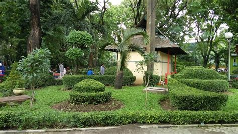 Bibit Gurame Di Surabaya menikmati rindangnya kebun bibit bratang taman flora surabaya