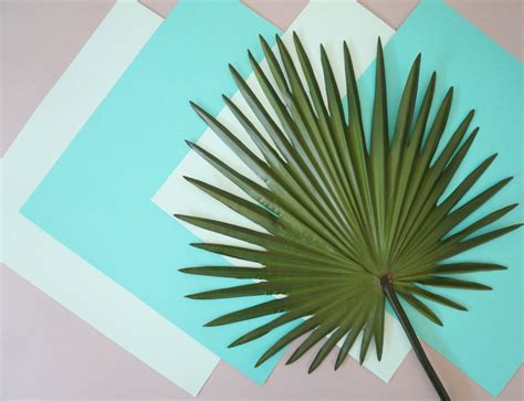 How To Make Paper Palm Leaves - diy tropical with palm leaves