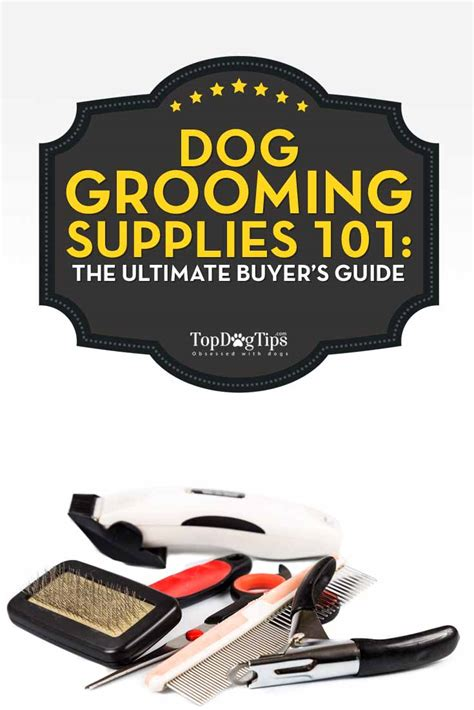 grooming equipment grooming supplies 101 the ultimate buyers guide top tips