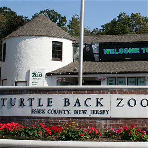 paddle boating near turtle back zoo loving south orange and beyond the weekender