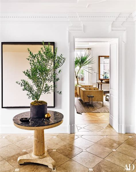 indoor plants nyc the best indoor house plants and how to buy them photos
