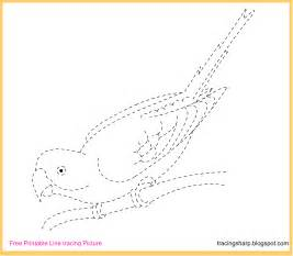 Trace Image Online Free Tracing Line Printable Bird Tracing Picture
