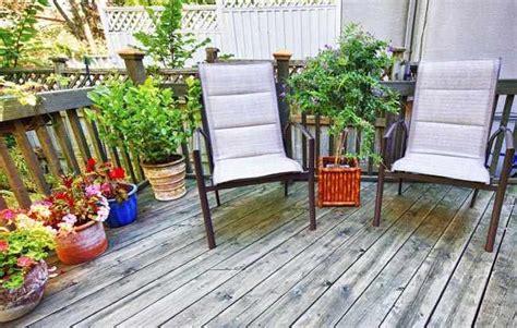 decorar con plantas un patio como decorar un patio interior