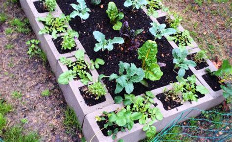 raised vegetable garden ideas raised vegetable garden ideas gardening flower and