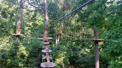 where does the st go treetop course picture of go ape treetop adventure