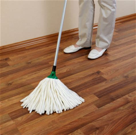 Mop For Hardwood Floors Mopping Static Guardstatic Guard