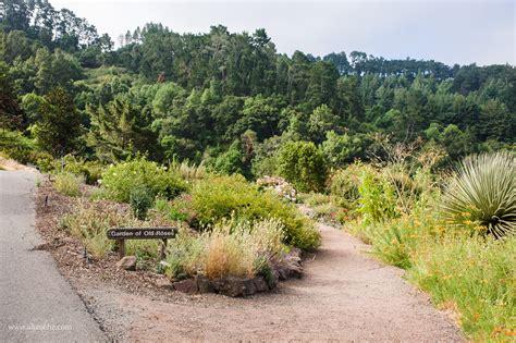 Uc Botanical Gardens Amazing Berkeley Botanical Garden Model Home Gallery Image And Wallpaper