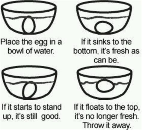 how to know if you look good with short hair egg freshness chart eggs pinterest charts and eggs