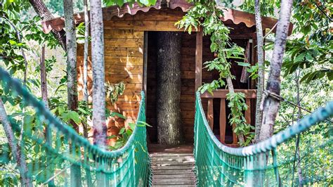 sull albero prezzi la casa sull albero dell agriturismo la conca a sansepolcro ar