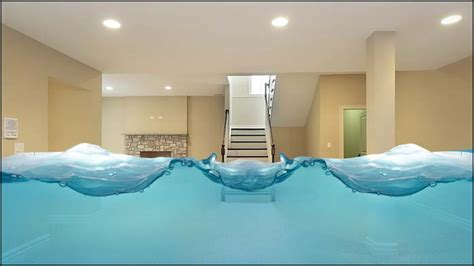 high water table basement telling it in nc estate by h backensto