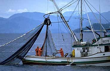 boating accident below deck fishermen seattle boat injury lawyers injury at sea