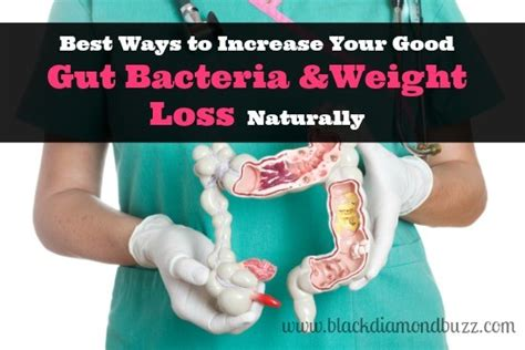 weight loss naturally 8 best ways to increase your gut bacteria and weight