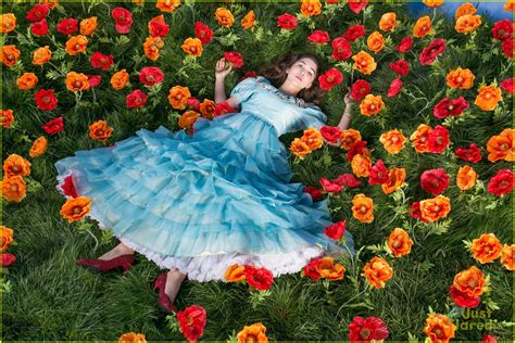 flower shops near me poppy flowers wizard of oz flower shop near me