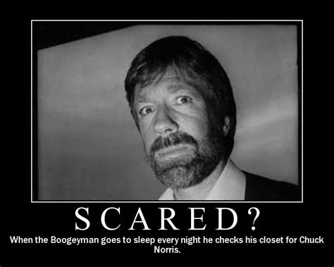 funny chuck norris oh my world