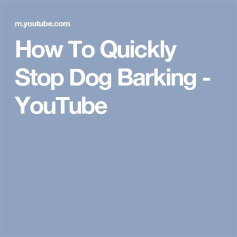 how to stop dog barking when left alone 1000 ideas about stop dog barking on pinterest training