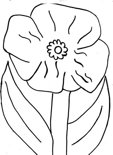 Papaveraceae Poppy Flower Coloring Coloring poppy flower drawing coloring page of a poppy flower