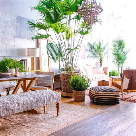 Tropical Decor Home by Best 25 Tropical Decor Ideas On Tropical