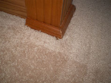 unique home depot carpet installation cost collection of