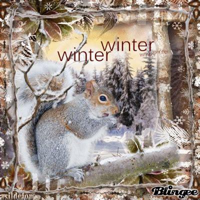 622222068592 Artsi Glitter Pets Squirrel winter squirrel picture 127810963 blingee