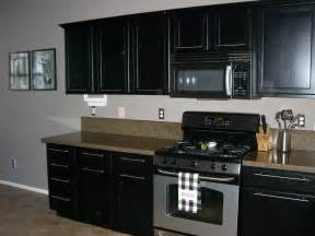 Painted Black Kitchen Cabinets Deciding Between Painting Kitchen Cabinets Black Or White Mykitcheninterior